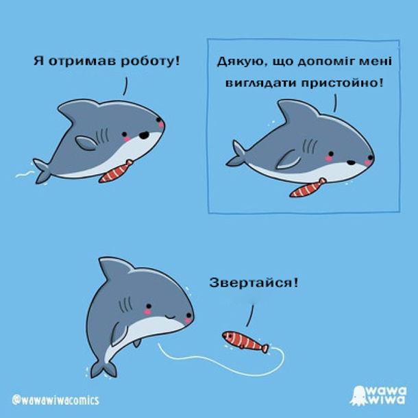 Смішний комікс Риба-краватка. Акула: Я отримав роботу! Дякую, що допоміг мені виглядати пристойно! Риба-краватка: - Звертайся!