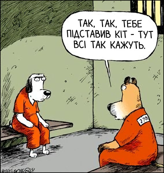 """Смішний малюнок Собаки у в'язниці. """"Так, так, тебе підставив кіт - тут всі так кажуть""""."""
