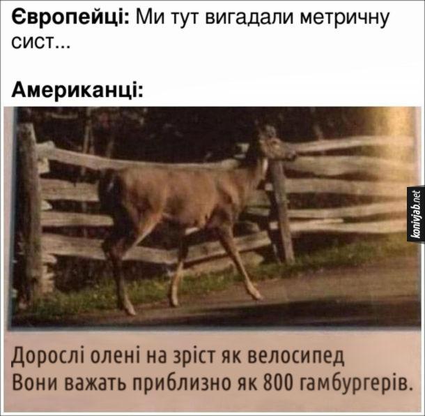 Жарт про американські одиниці виміру. Європейці: Ми тут вигадали метричну сист... Американці: Дорослі олені на зріст як велосипед. Вони важать приблизно як 800 гамбургерів.