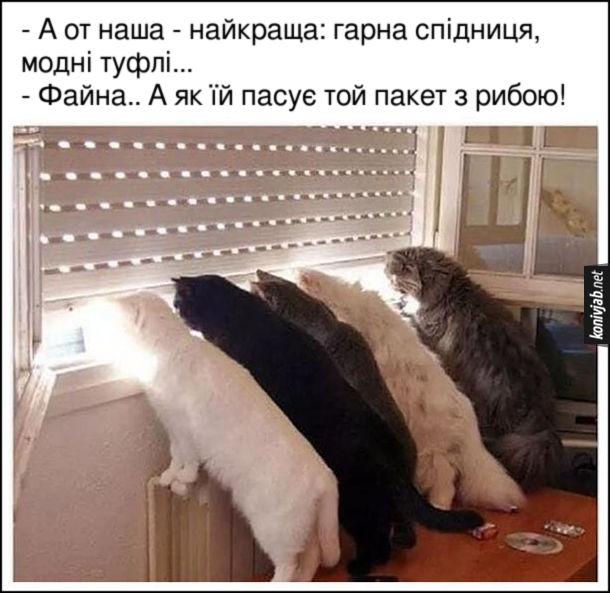 Прикол Коти чекають на господиню. - А от наша - найкраща: гарна спідниця, модні туфлі... - Файна.. А як їй пасує той пакет з рибою!