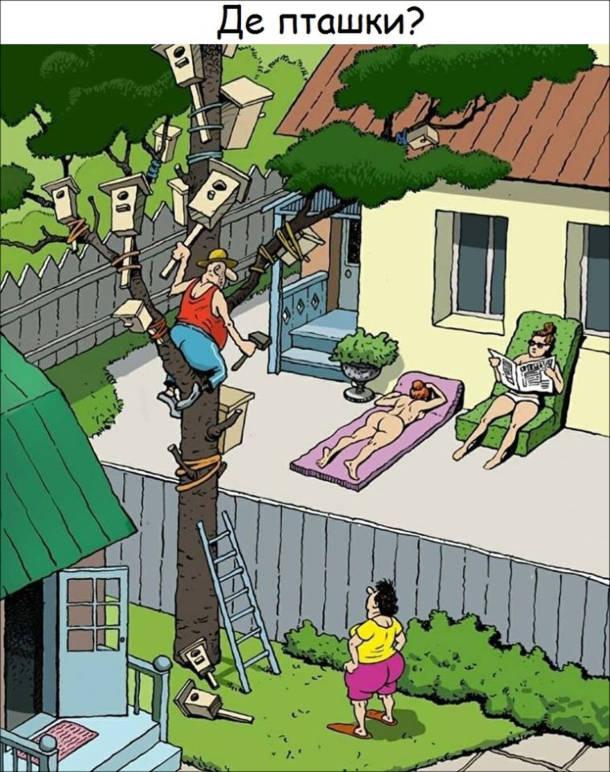 Смішний малюнок Оголені сусідки. Сусід постійно сидить на дереві і прибиває шпаківні. Дружина: - Де пташки?