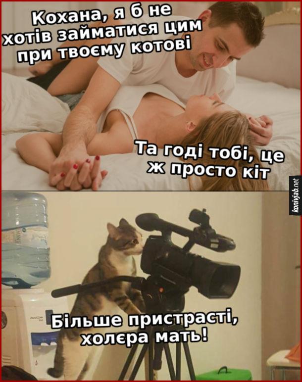 Прикол Секс при котові. - Кохана, я б не хотів займатися цим при твоєму котові. - Та годі тобі, це ж просто кіт. Кіт з камерою: - Більше пристрасті, холєра мать!