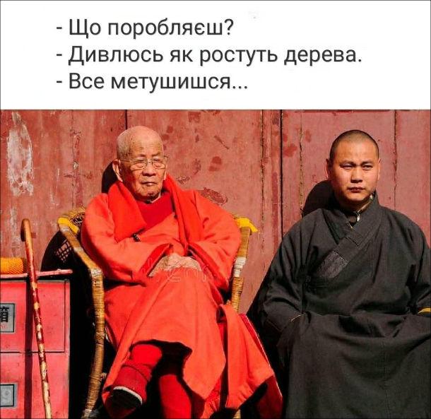 Прикол Буддійські монахи. - Що поробляєш? - Дивлюсь як ростуть дерева. - Все метушишся...