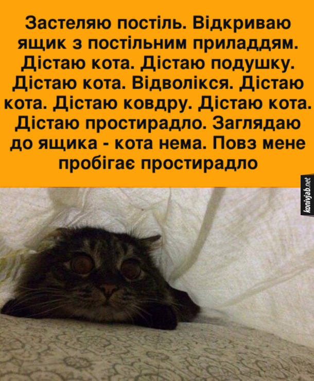 Кіт заважає застеляти постіль. Застеляю постіль. Відкриваю ящик з постільним приладдям. Дістаю кота. Дістаю подушку. Дістаю кота. Відволікся. Дістаю кота. Дістаю ковдру. Дістаю кота. Дістаю простирадло. Заглядаю до ящика - кота нема. Повз мене пробігає простирадло