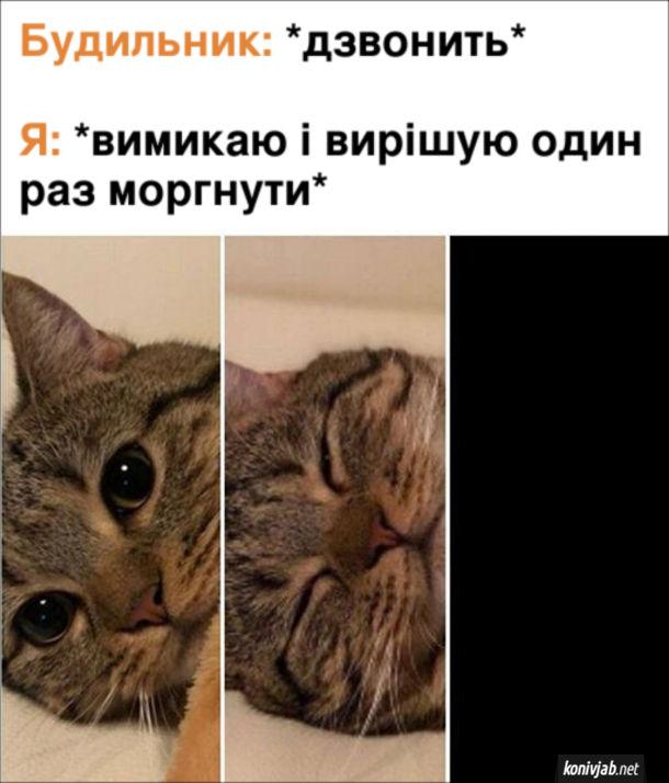 Мем Будильник зранку. Будильник: *дзвонить*. Я: *вимикаю і вирішую один раз моргнути*