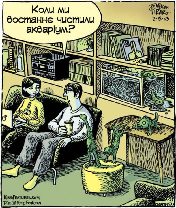 Смішний малюнок про акваріум. З акваріума вилазять риби і еволюціонують . Чоловік подивився на це і питає дружини: - Коли ми востаннє чистили акваріум?
