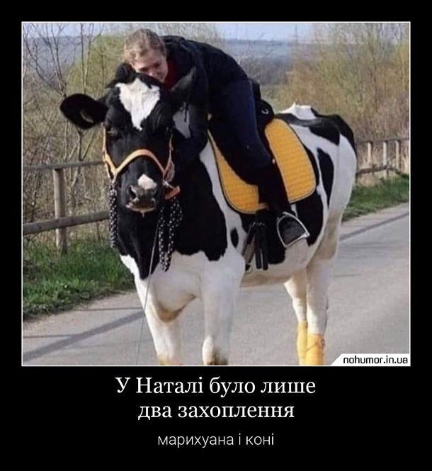 Демотиватор Дівчина на корові. У Наталі було лише два захоплення - марихуана і коні
