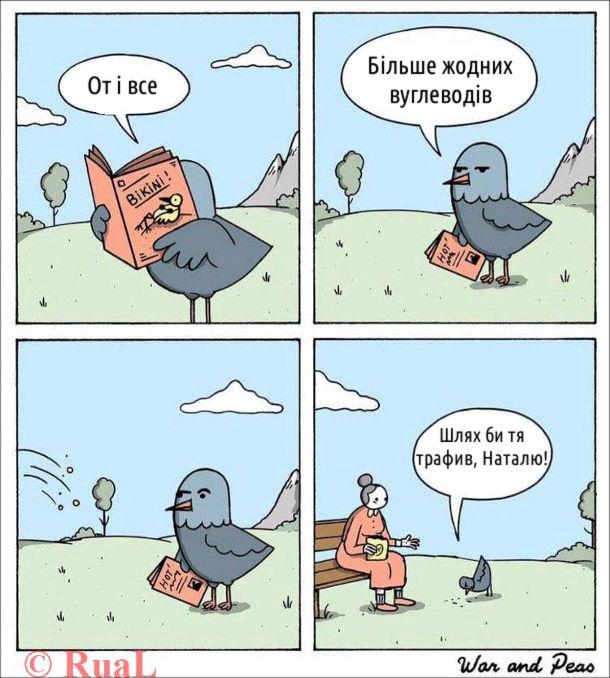 """Смішний комікс Годування птаха. Птах почитав журнал про бікіні і каже: """"От і все. Більше жодних вуглеводів"""". Бабуся на лавочці почала кидати пахові хлібні крихти. Птах почав їсти, примовляючи: """"Шлях би тя трафив, Наталю!"""""""