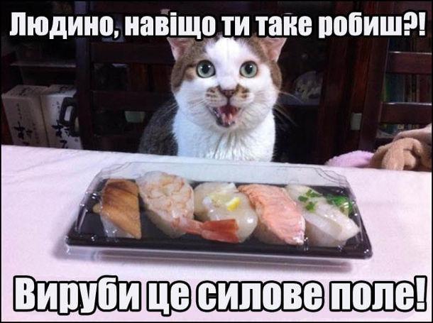 Прикол Кіт за столом. Кіт не може з'їсти їжу на тарілці, бо вона накрита прозорою пластиковою кришкою. Кіт: - Людино, навіщо ти на ке робиш?! Вируби це силове поле!