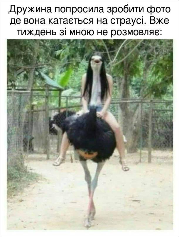 Смішне фото Дівчина на страусі. Дружина попросила зробити фото де вона катається на страусі. Вже тиждень зі мною не розмовляє.