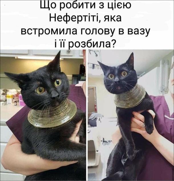 Кицька  встромила голову у вазу. Що мені робити з цією Нефертіті, яка встромила голову в вазу і розбила її?