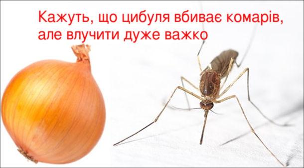 Кажуть, що цибуля вбиває комарів, але влучити дуже важко