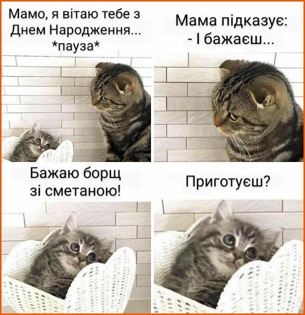 Мем Вітання мами з днем народження. Кішка і кошеня. Кошеня: - Мамо, я вітаю тебе з Днем Народження... *пауза*. Мама підказує: - І бажаєш... - Борщ з сметаною! Приготуєш?