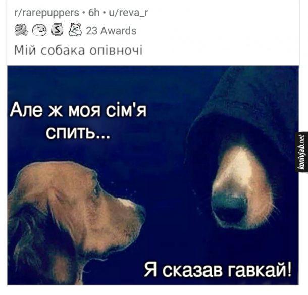 Мем Пес гавкає вночі. Мій собака опівночі: - Але ж моя сім'я спить... Темний бік собаки: - Я сказав гавкай!