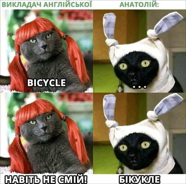Мем як читати bicycle. Викладач англійської: - Bicycle. Анатолій:- ... Викладач: - Навіть не смій! Анатолій: - Бікукле