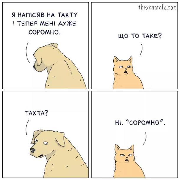 """Смішний комікс пес і кіт. Пес: - Я напісяв на тахту і тепер мені дуже соромно. Кіт: - Що то таке? Пес: - Тахта? Кіт: - Ні. """"Соромно""""."""