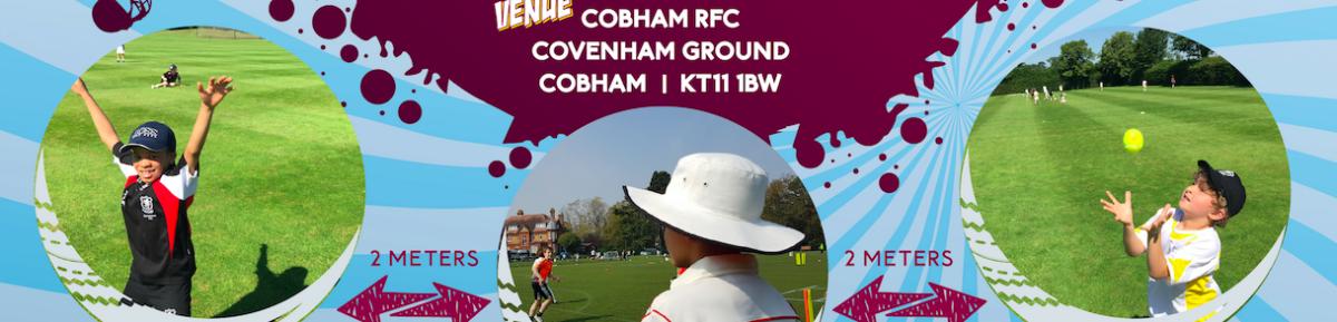 Cobham Academy Ltd.