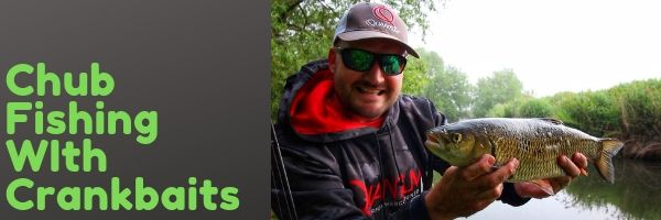 Chub Fishing with Crankbaits