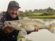 THE BEST ZANDER LURE FOR FISHING CANALS
