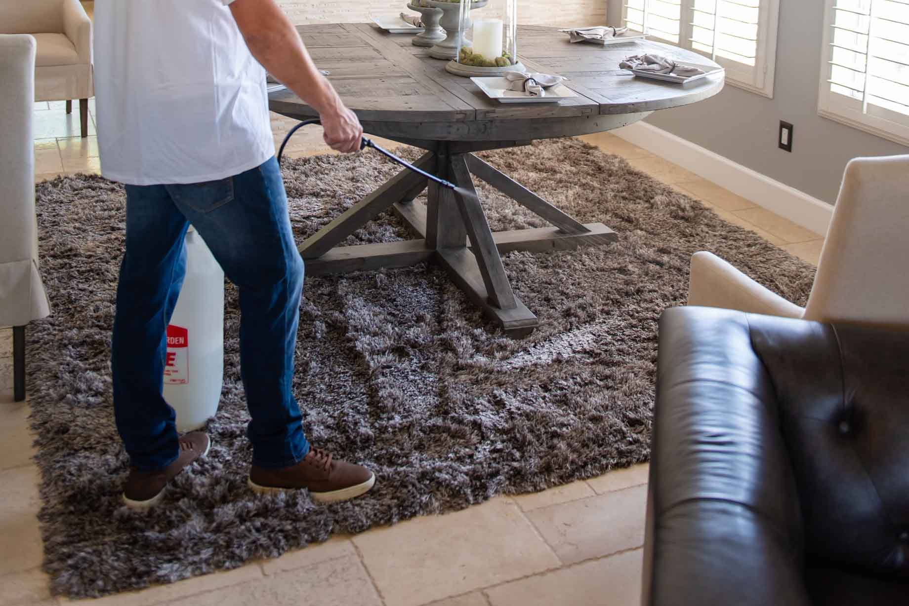 Carpet Disinfecting service