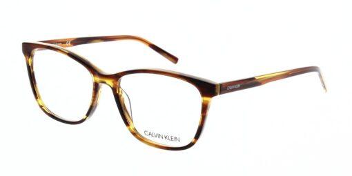 Calvin Klein Glasses CK6010 203 54