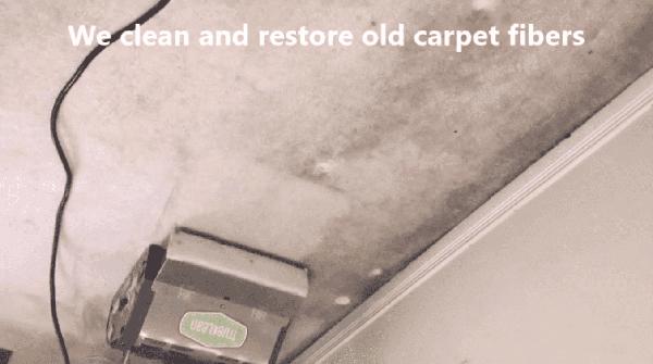 Best Carpet Cleaning Oakville, Mississauga, Brampton