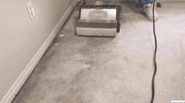 Best Carpet Cleaning Oakville, Mississauga