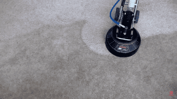Carpet, Tile & Grout Cleaning Services Oakville, Mississauga