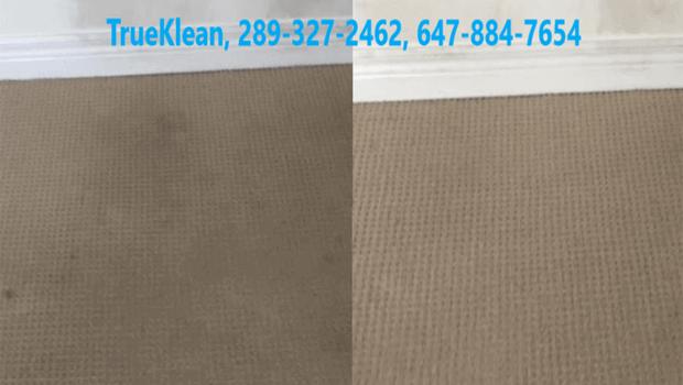 Carpet Cleaning Oakville