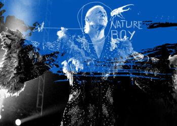 Artwork: cover di Nature Boy per MONDOSERIE