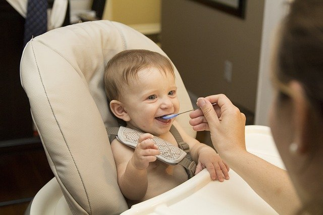 List of Foods for 8+ months old babies