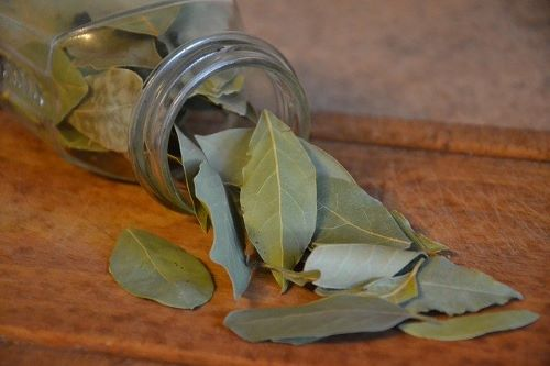 2 Ingredients Tea for Weight Loss