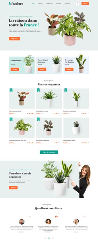 Création Site Internet Boutique