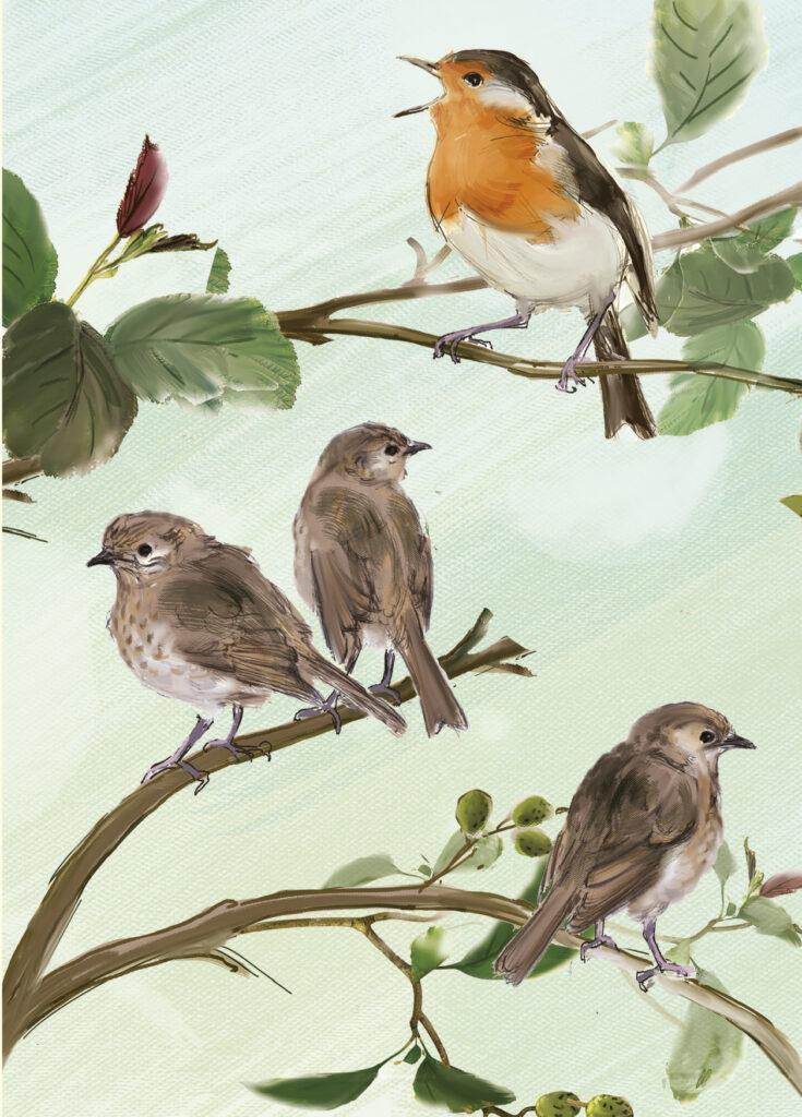 European Robin Painting by Julian Williams