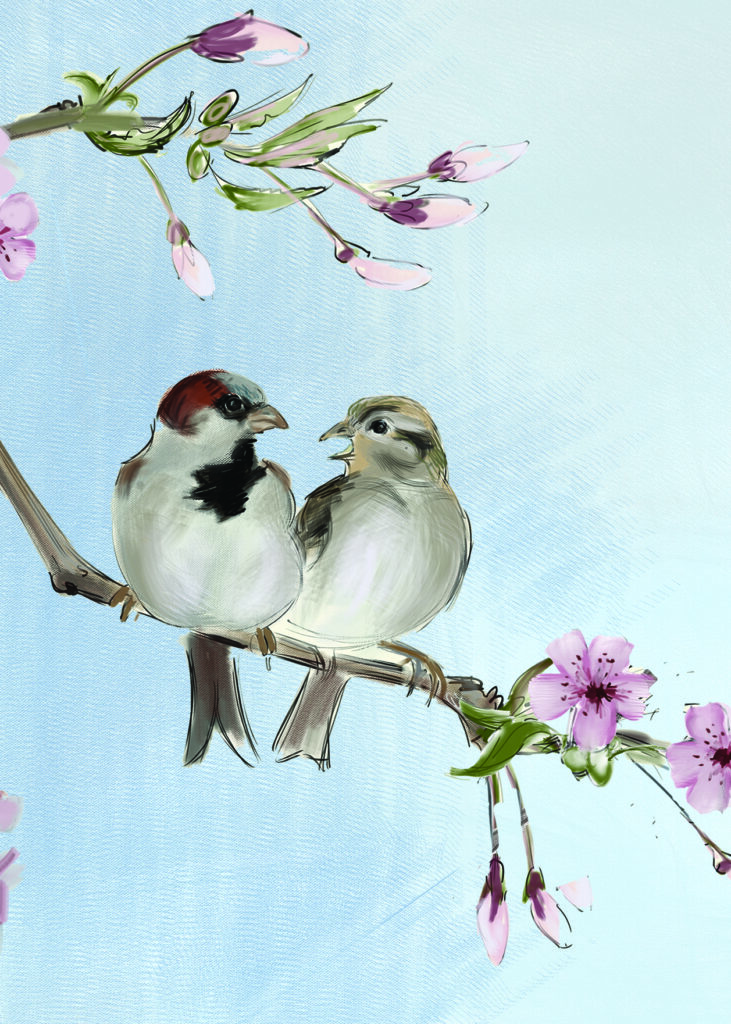 House Sparrows - Painting and Greeting card by Julian Williams