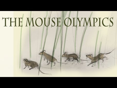 Mouse Olympics Chapter 1