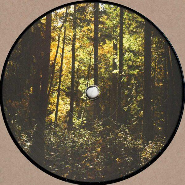"""Jared Wilson - New Era - 12"""" (JJB-001)"""