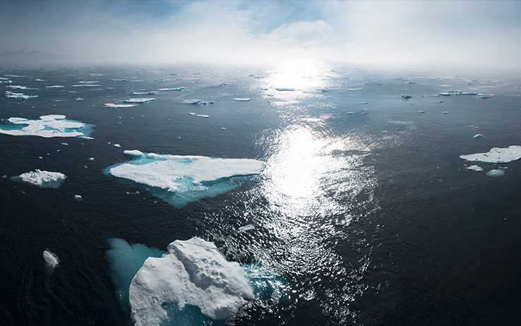 marketing cambio climatico