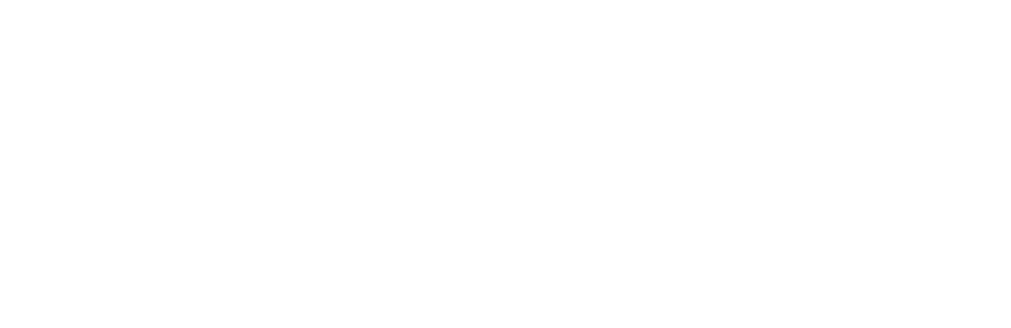 Curio Conference