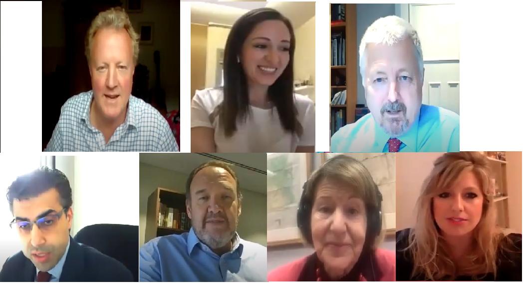 IBBC held an Online Panel with BP, Mastercard, SKA and AMAR Foundation Webinar-photo