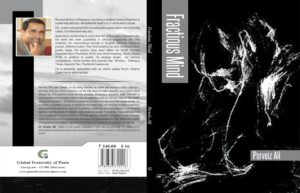 Fractious-Mind-Book
