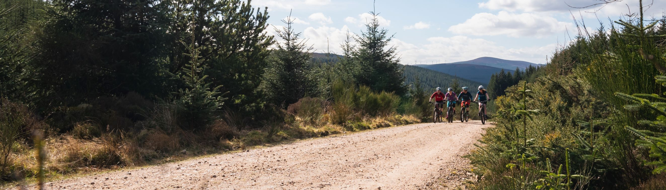 Mountain bikers on a forest road in Aberdeenshire