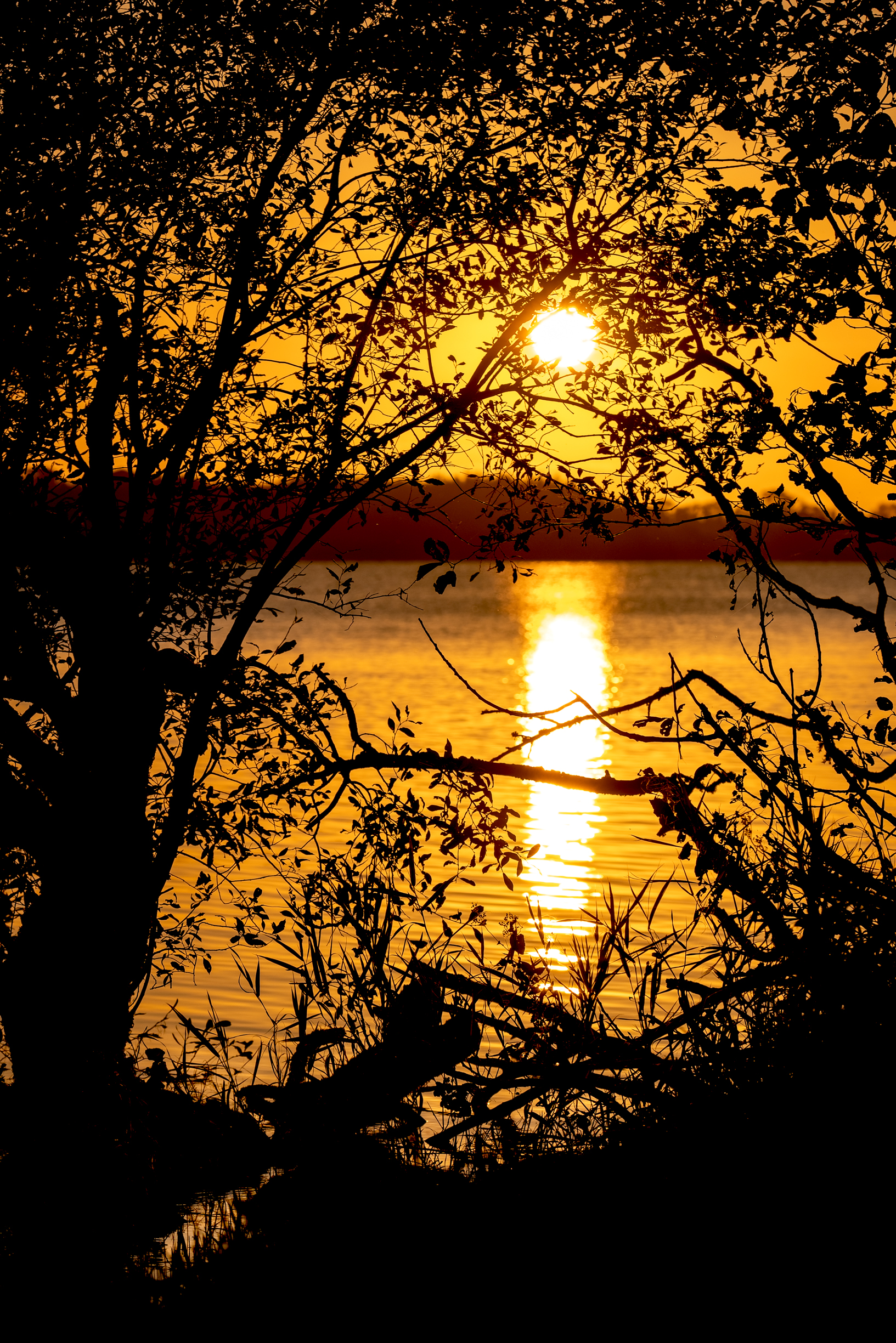 Golden Sunset Loughrea