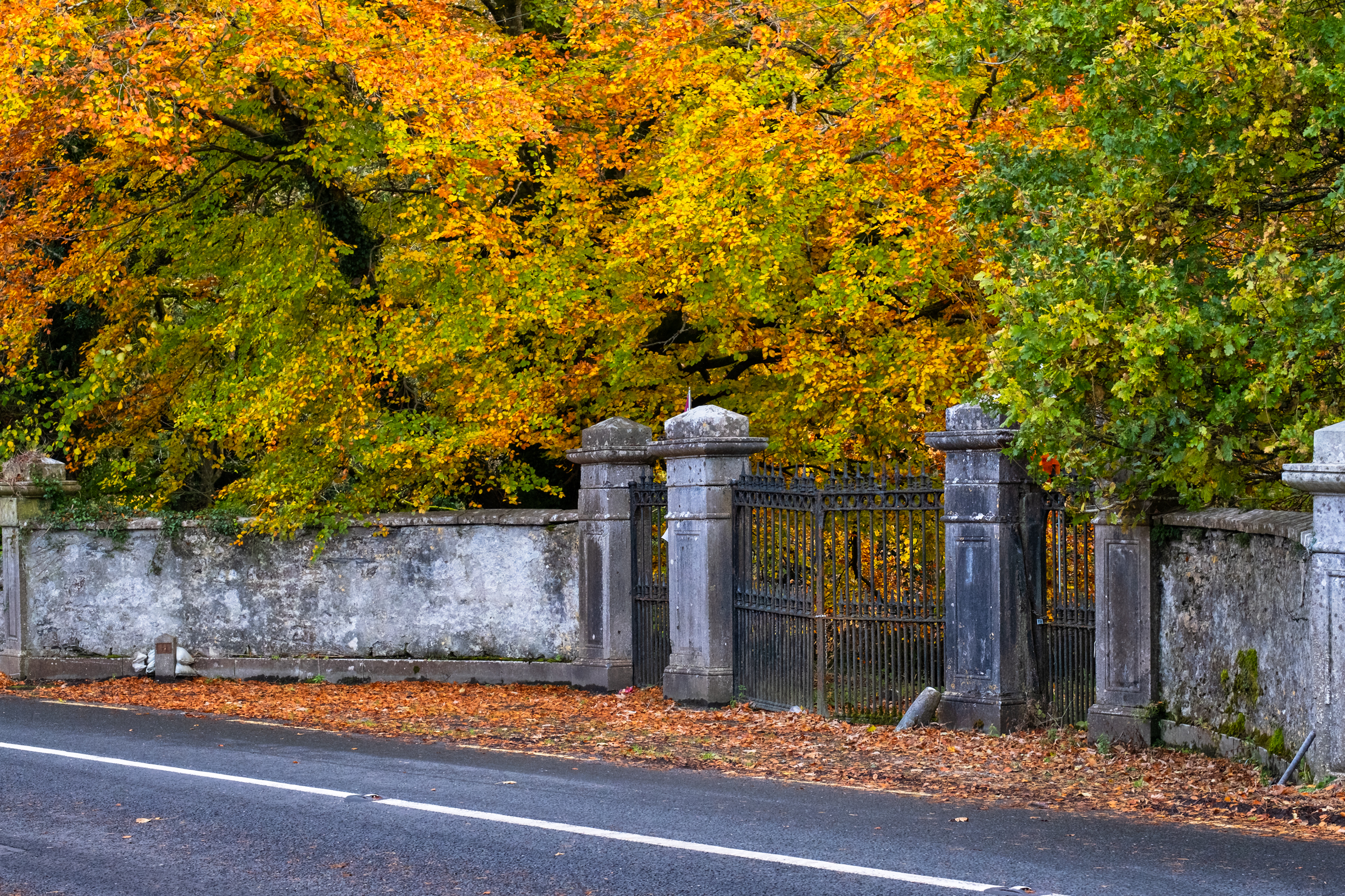 raford house gates in autumn