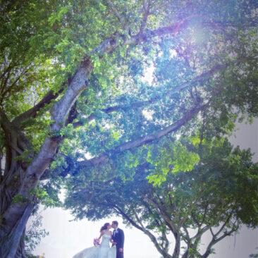 Best Wedding Planner Palm Beach County