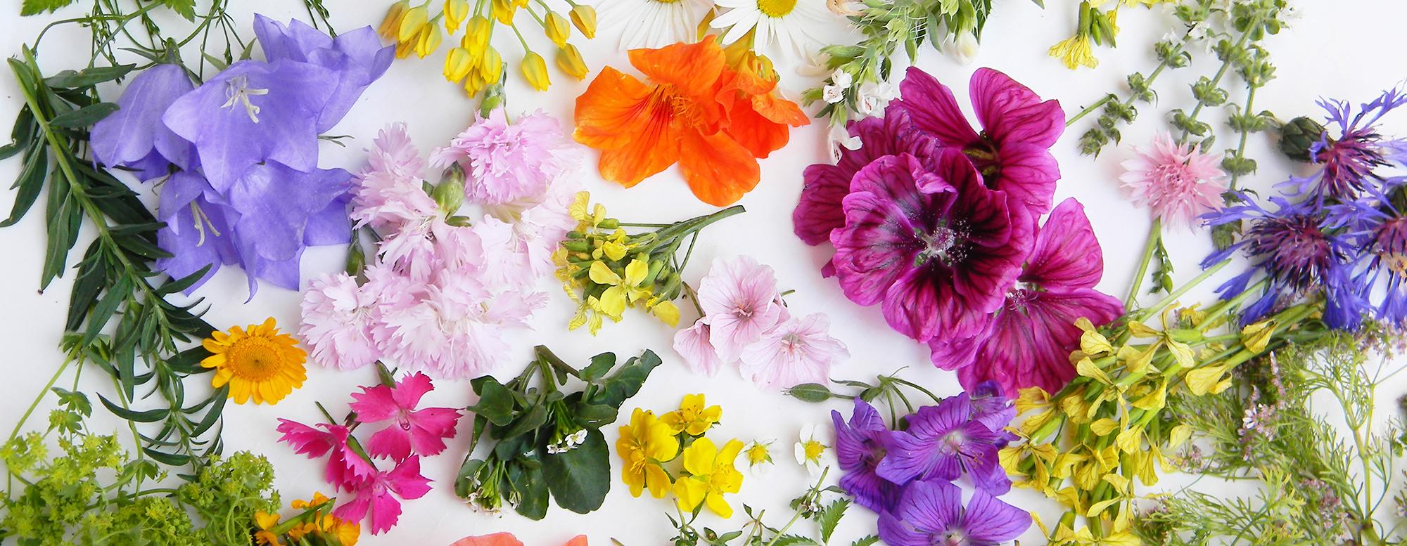 Edible Flowers Wedding Planning