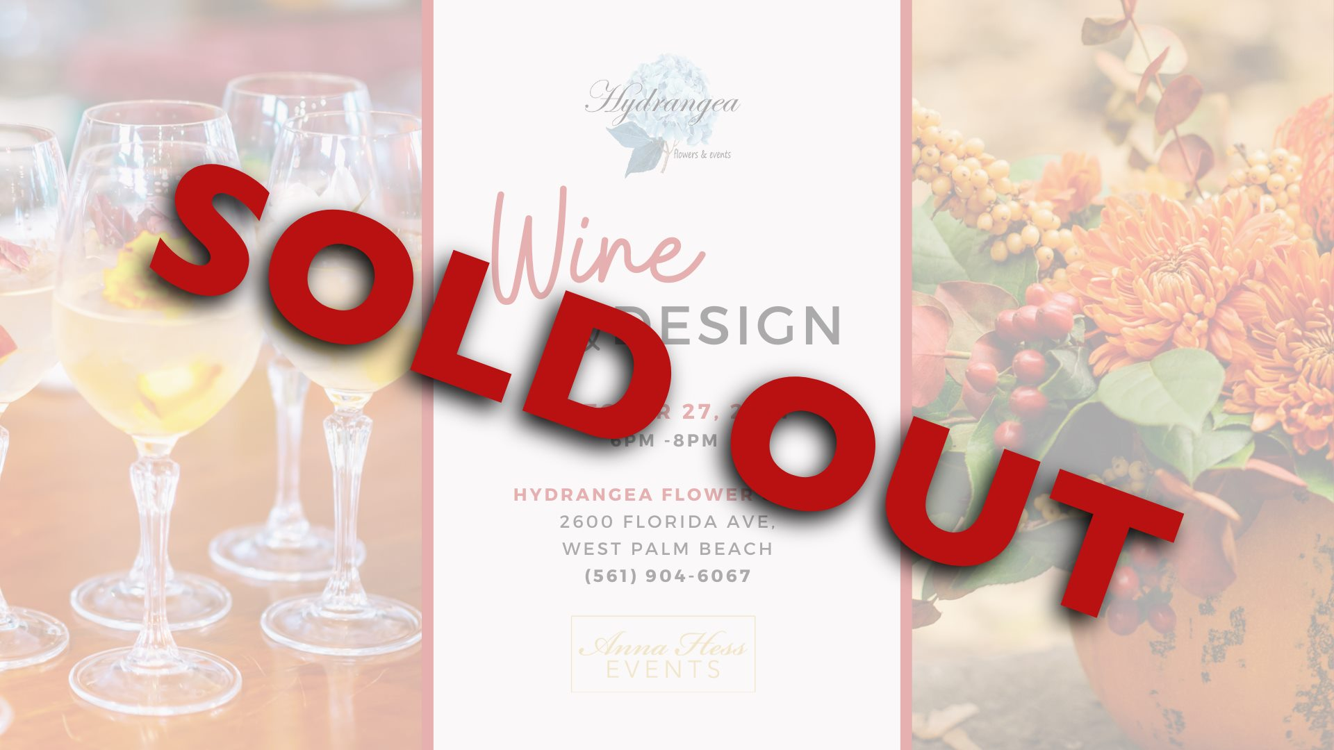 Anna Hess Sold Out Event