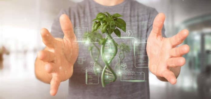 Genome editing, i primi cloni del futuro sono dietro l'angolo