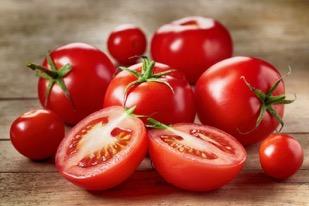 Pomodori come grappoli d'uva: la varietà creata per l'urban farming utilizzando l'editing genetico
