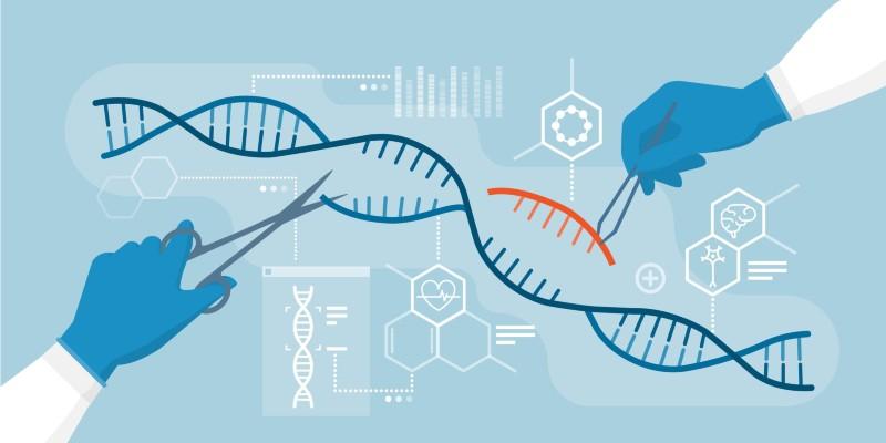 Riuscirà CRISPR a far cambiare sguardo sull'agricoltura?